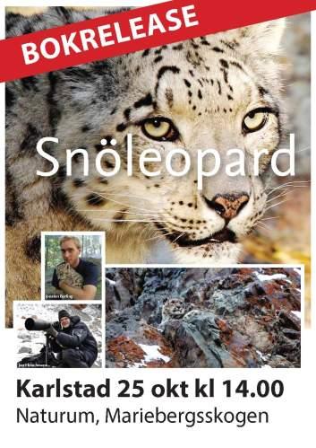 Affisch - Release Karlstad