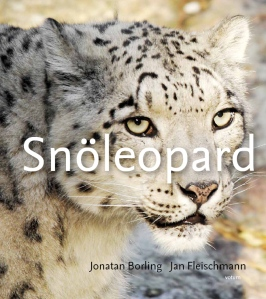 Snöleopard - Framsida