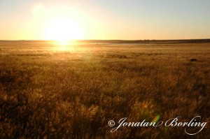 s2011-04-27-African-savanna