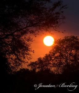 ss2011-05-08-solnedgång1-ed1