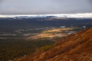 The view from Munsfjället in Jämtland.