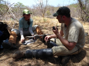 Claudia and Carlão mount a radio transmitter which lets us see from the camp when an animal has stepped in the snare.